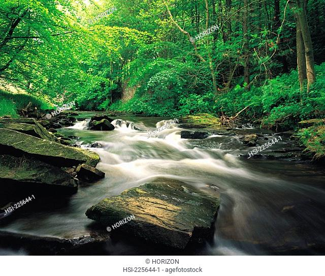 United Kingdom, England, Cheshire, Wildboarclough, River Dane