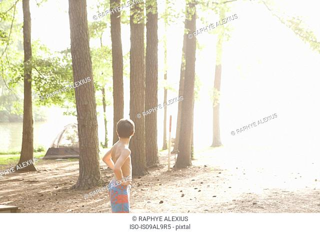 Teenage boy in sunlit forest, Arkansas, USA