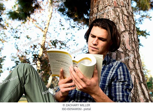 Low angle view of young man sitting against tree reading book