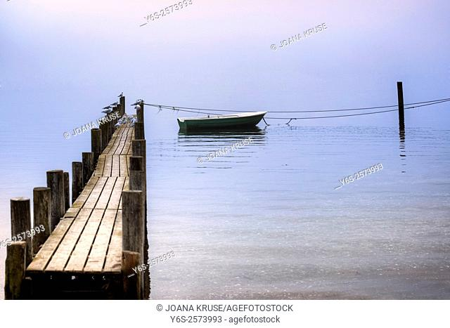 an old wooden jetty with seagulls and a rowing boat in Sonderhav, Jutland, Denmark