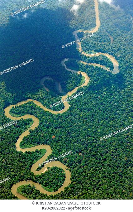 Aerial view of the thick rainforest, Papua, Indonesia, Southeast Asia