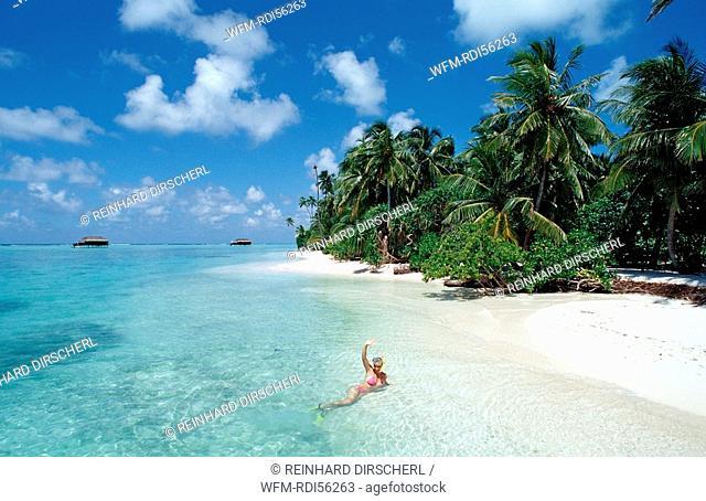 Snorkeler at Maldives, Indian Ocean, Medhufushi, Meemu Atoll, Maldives