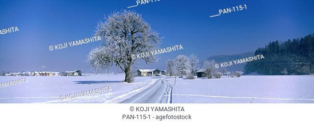 Rural Scene in Winter, Austria