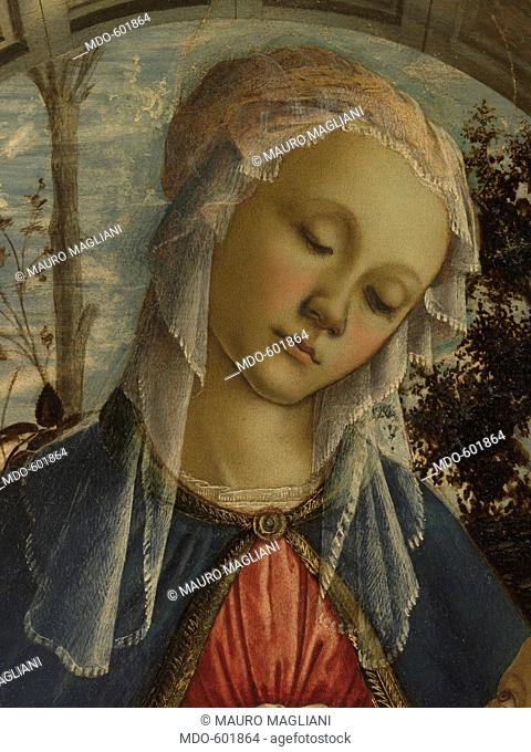 Virgin and Child (The Madonna of the Roses), by Sandro Filipepi Known as Botticelli, 1470, 15th Century, panel, . Italy, Tuscany, Florence, Uffizi Gallery