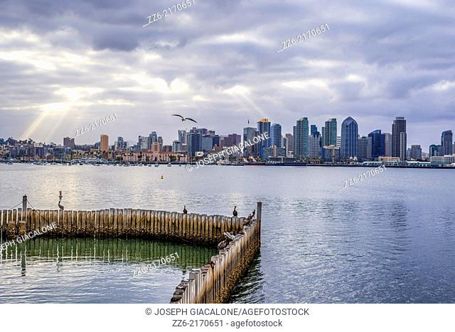 San Diego Harbor and the Downtown Skyline. San Diego, California, United States