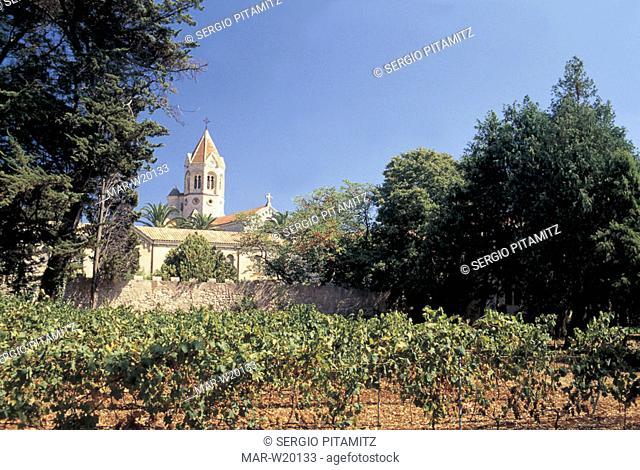 france, ile de saint-honorat, abbey, vineyards