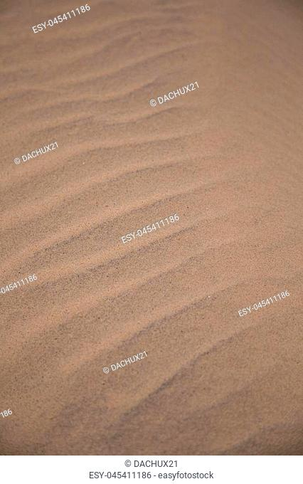 A beautiful sea sand pattern on a beach. Baltic sea shore sand texture. A beautiful sandy pattern for background