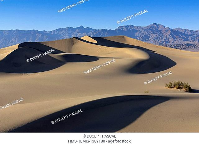 United States, California, Death Valley National Park, Mesquite Flat Sand Dunes