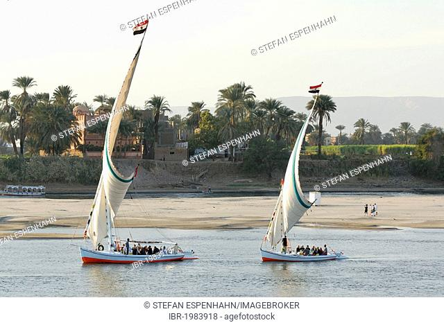 Feluccas, traditional wooden sailing boats, on the Nile, Luxor, Nile Valley, Egypt, Africa