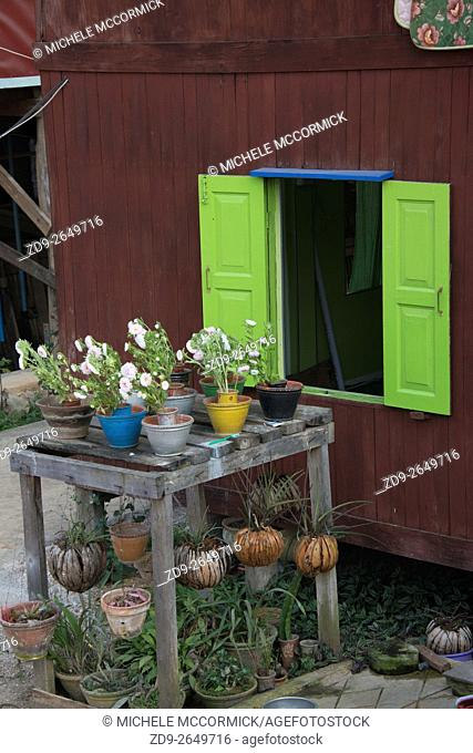 Potted plants by a shuttered window at Inle Lake in Myanmar