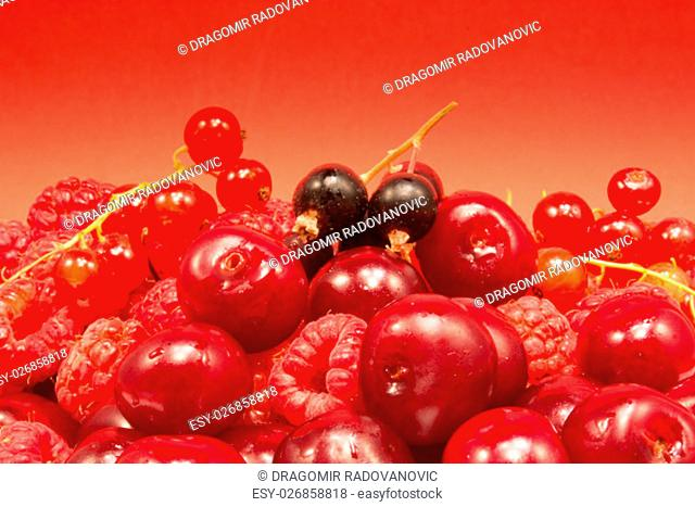Cherries, raspberries and red and black currant on red background