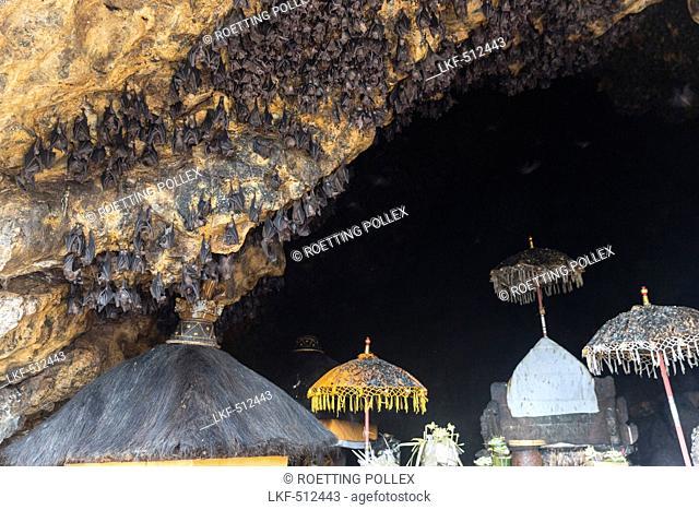 Odalan festival, Pura Goa Lawah bat cave, Padangbai, Bali, Indonesia