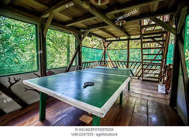 Guatemala, Rio Dulce, Finca Tatin, ping pong table in the jungle