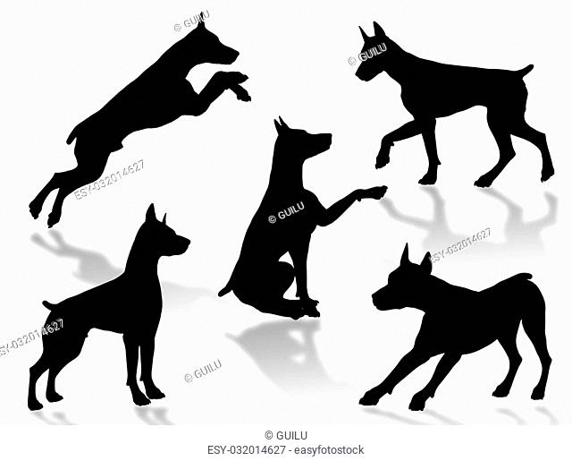 Dog silhouettes in different poses and attitudes