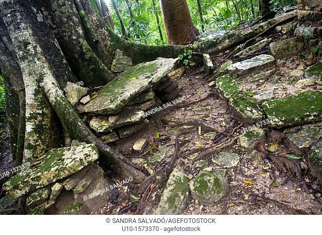 The Río Usumacinta Valley, Piedras Negras Archaeological Site, Peten, Guatemala