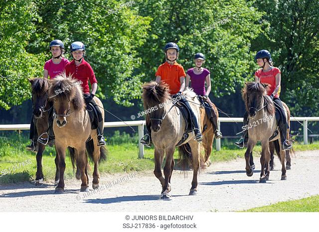 Icelandic Horse. Group of horses ridden by children outdoors in spring. Austria