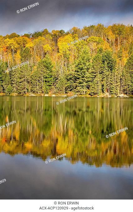 Canisbay Lake Autumn reflection in Algonquin Provincial Park, Ontario, Canada