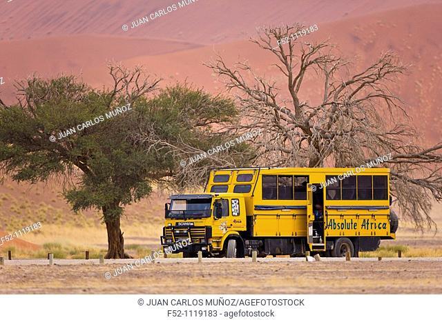 Dune 45, Sossus Vlei, Sesriem, Namib-Naukluft National Park, Namib Desert, Namibia