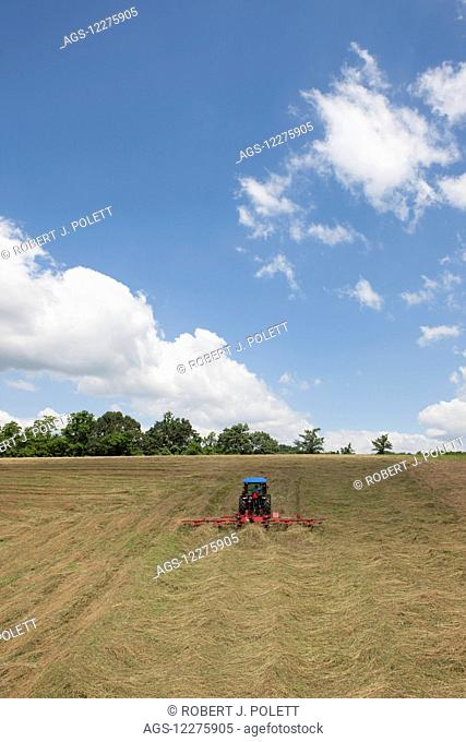 New Holland T4050 tractor with H5270 tedder in alfalfa; New Holland, Pennsylvania, United States of America