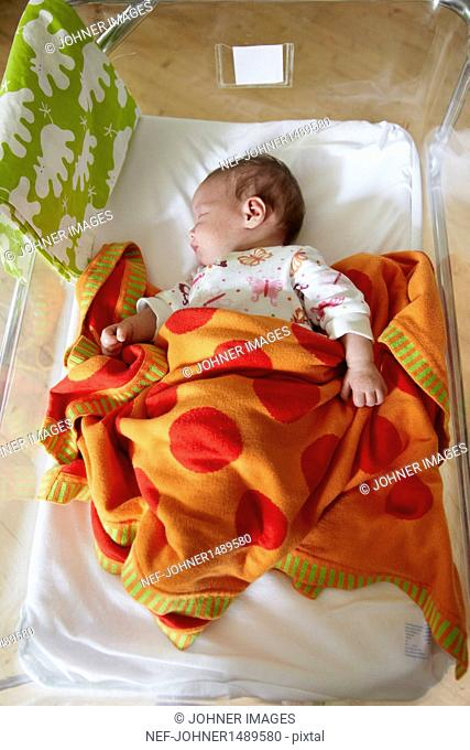 Newborn baby sleeping in cot