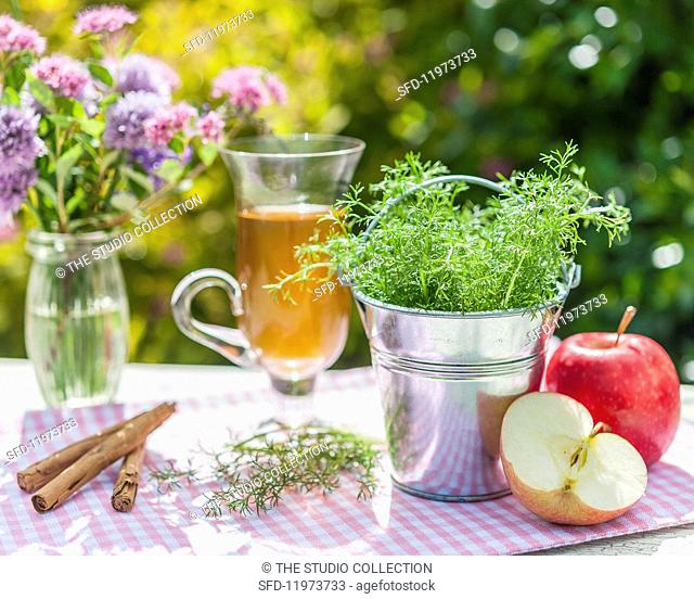 Chamomile in the tin bucket, apples, cinnamon sticks and tea on a garden table