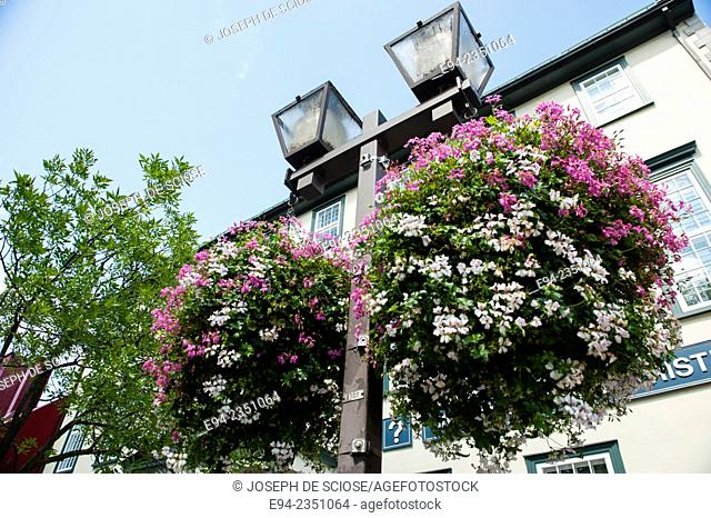 Hanging flower basket from a light pole in Quebec City, Canada