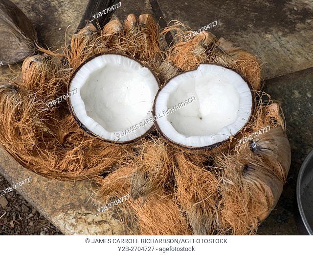 Hawaii, Maui, Coconut halved