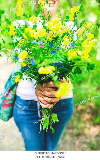 Cropped shot of woman holding bunch of fresh yellow wildflowers in garden