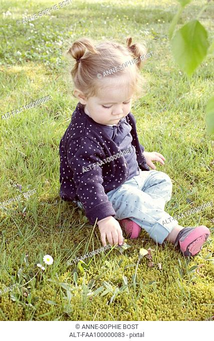 Baby girl sitting on grass, picking flower