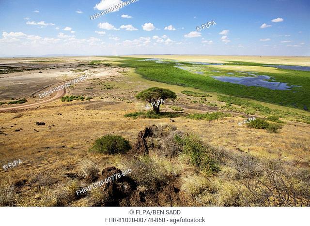View of savannah and marshland habitat, Lookout Hill, Amboseli N.P., Kenya, February
