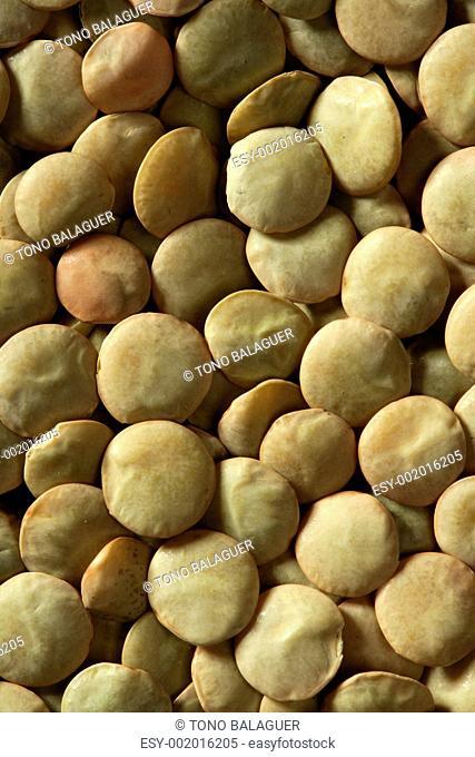 Lentils macro crop texture in brown color