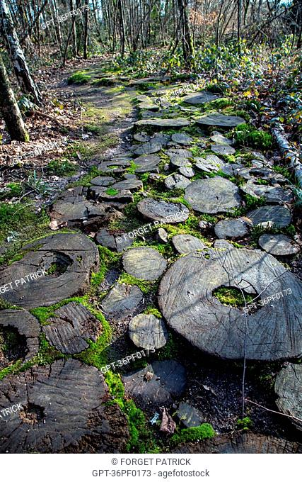 LOG PATH, THE PARELLES PARK, FORMER GRANITE QUARRY, SOURCE OF INSPIRATION FOR GEORGE SAND'S PASTORAL LEGENDS, CREVANT, THE BLACK VALLEY OF THE BERRY (36)