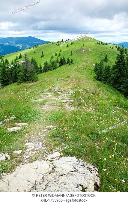 Slovakia, landscape near Donovaly at the lower Tatras