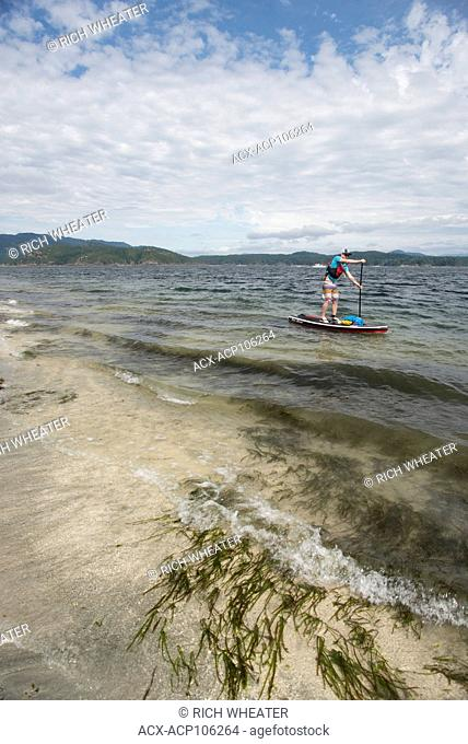 Stand-up paddleboard (SUP) touring in Heriot Bay, Quadra Island, British Columbia, Canada