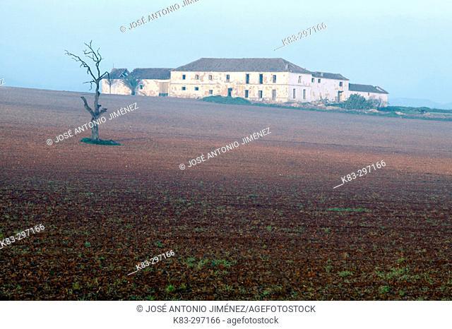 'Cortijo' (typical Andalusian farmhouse). Antequera, Málaga province. Spain