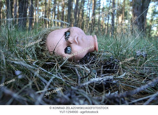 Plastic doll's head in forest