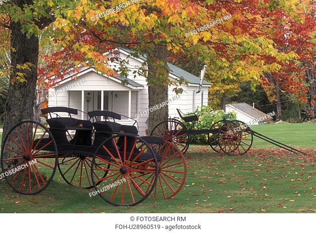 wagon, cottage, autumn, Westmore, VT, Vermont, Antique wagons display outside a country cottage in the fall