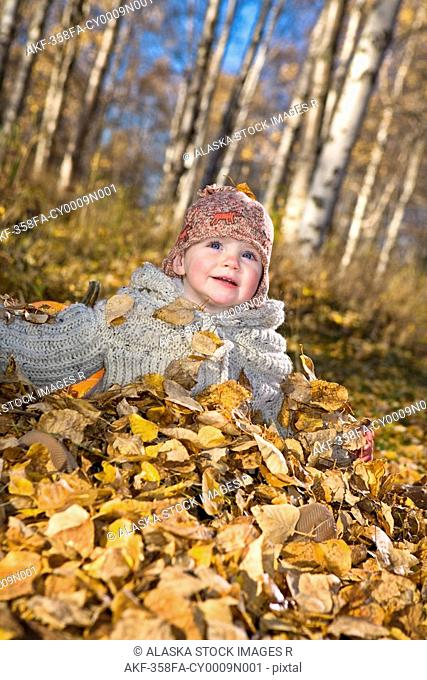 Young girl toddler playing in the Fall leaves next to pumpkins in a forested area of Anchorage in Southcentral Alaska