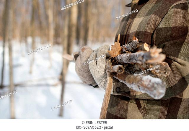 Man gathering wood in forest, Young's Point, Ontario, Canada