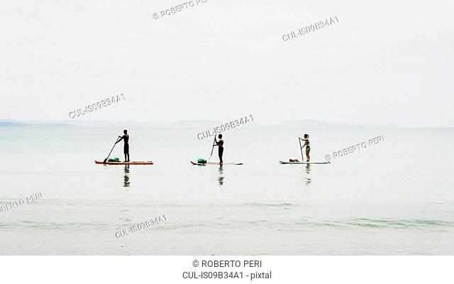 Friends paddleboarding, Olbia, Sardinia, Italy