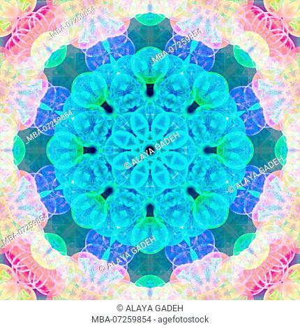 Photographic flower mandala, blue, turquoise, pink, yellow