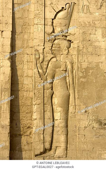 THE GODDESS HATHOR, TEMPLE OF EDFU, THIS TEMPLE IS THE BEST PRESERVED OF ALL OF ANCIENT EGYPT, TEMPLE DEDICATED TO THE FALCON GOD HORUS