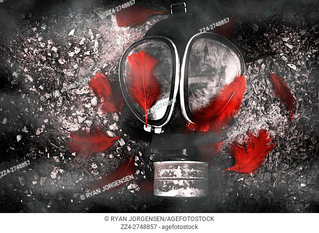 Top view of breathing protective gasmask covered with red feathers on ground. Mourning after terror