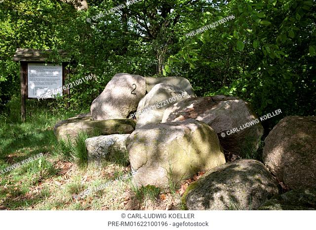 Stones at Herrenweg, Feldberg, Feldberger Seenlandschaft, Mecklenburgische Seenplatte district, Mecklenburg-Vorpommern, Germany / Steinschlägerhügel am...