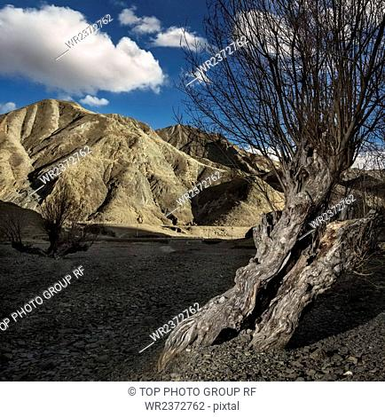 Bading Village Tibet Autonomous Region China
