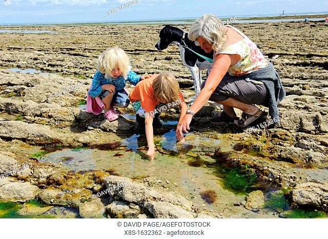Stock photo of children loking in rockpools
