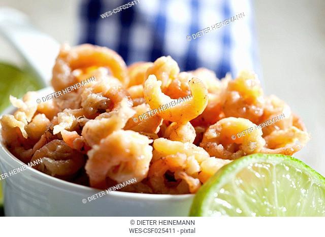 Bowl of North sea shrimps