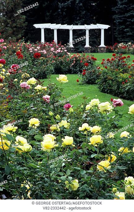 Rose Hill garden, Manito Park, Spokane, Washington