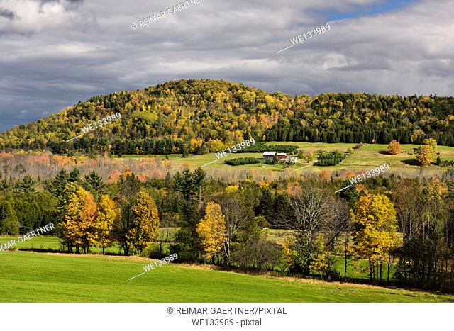 Isolated farmhouse among orange trees in Fall color under Blue Mountain Vermont