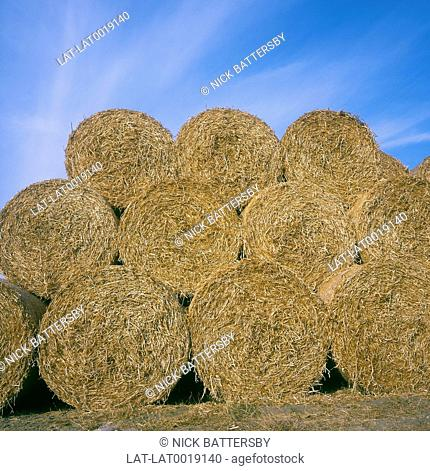 Harvesting is the process of gathering mature crops from the fields,marking the end of the growing season. Round bales of straw are produced by the use of a...